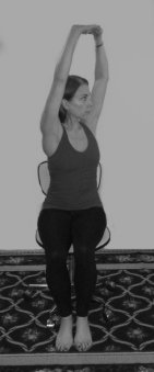 Seated arms press up twist bw-small